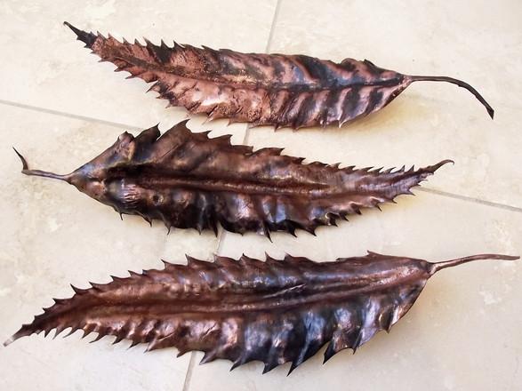 Sweetchestnut Leaf 1-3