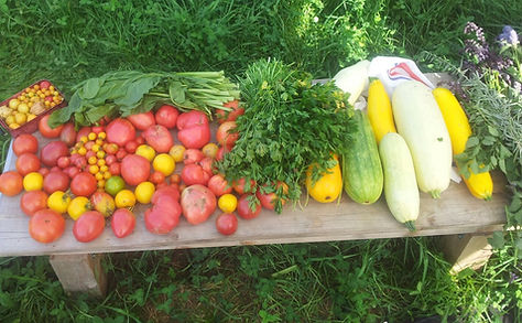 Koowo Ladwirtschaften Gemüse