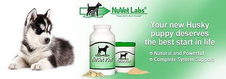 www.nuvet.com
