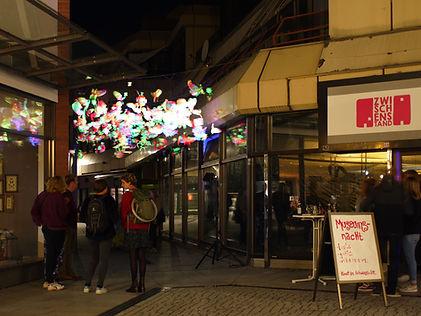 Museumsnacht 2 OK s.jpg