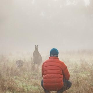 Westerforlds Kangaroo.jpg