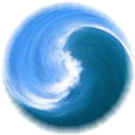 Wave Yin Yang