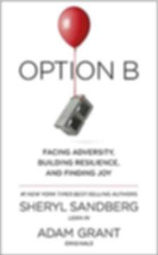 Option B.jpg
