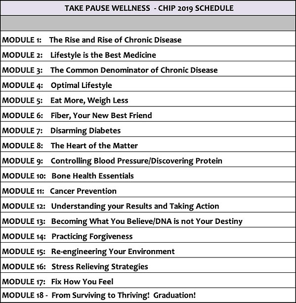 Chip Modules 2019 Take Pause Wellness.jp