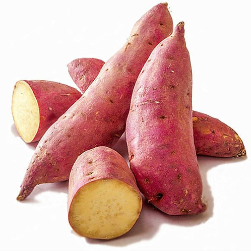 Sweet Potato - शकरकंद