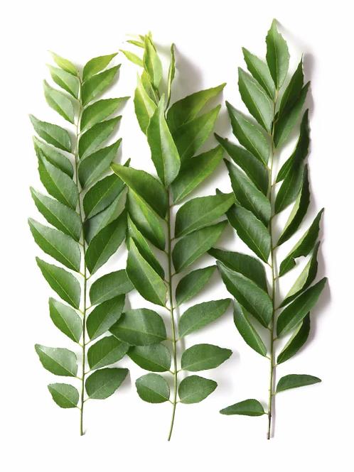 Curry Leaves - करी पत्ते