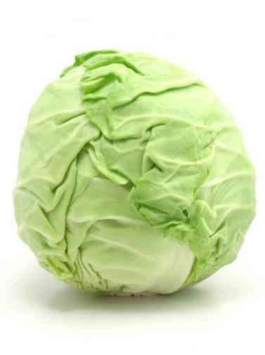 Cabbage - पत्ता गोभी