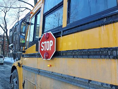 school-bus-montreal.webp