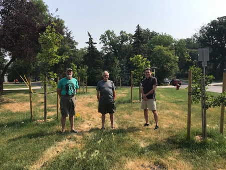 Kingston Row boulevard group receives grant for trees