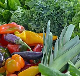 vegetables.webp
