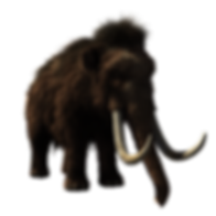 woolly-mammoth-2722882_960_720.png