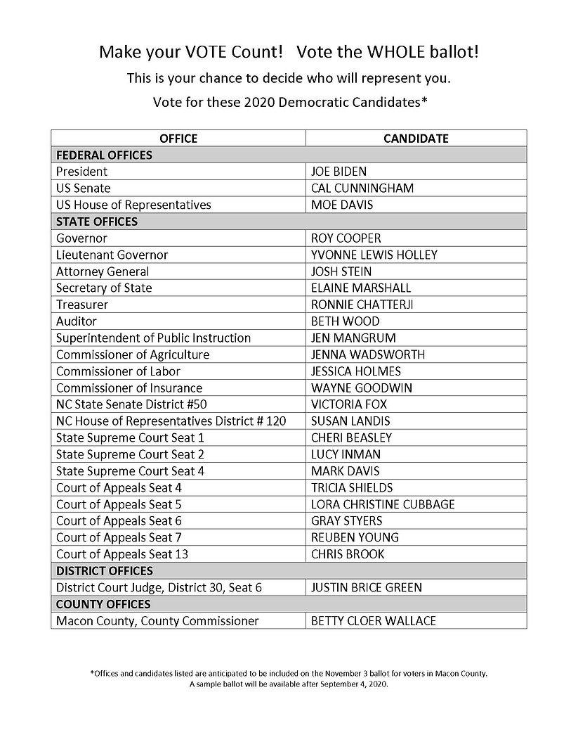2020 Democratic Candidates 1.jpg
