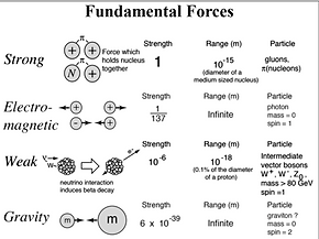 Fundamental Forces_edited_edited.png
