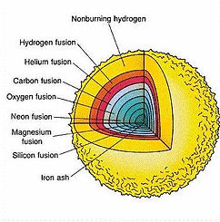 fusion evolution.jpg