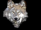 logoAPP_AFFINITY_02.png