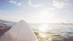 Seadny Surfboards