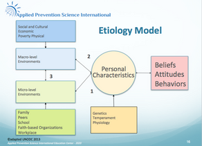 What is the Etiology Model and how does it explain why people get involved in substance use?