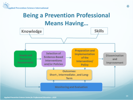 What are the key knowledge, skills, and competencies of prevention professionals?