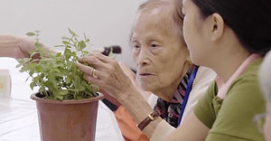 mindful-greem-elderly.jpg