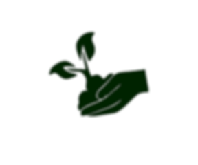 reforestacion programa logo.png