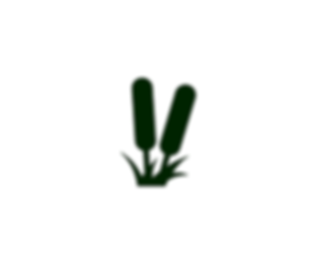 Logo Programa Nacional de Humedales.png