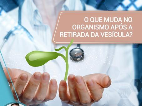 O que muda no organismo após a retirada da vesícula?
