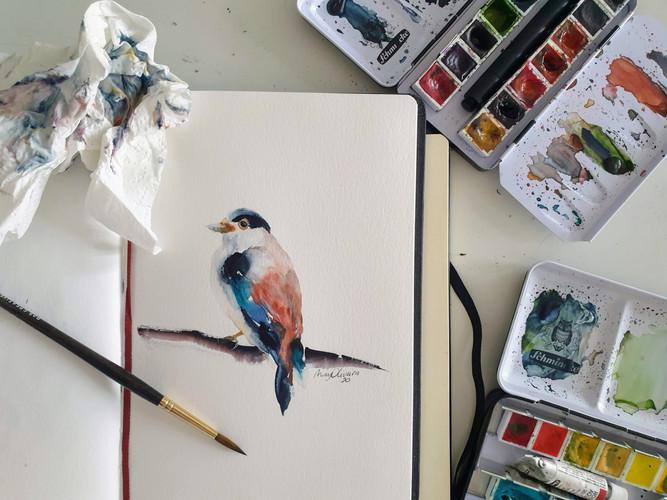 Pássaro.jpg