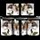 Thumbnail: Junco Java