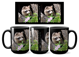 Baby Raccoon W-07B
