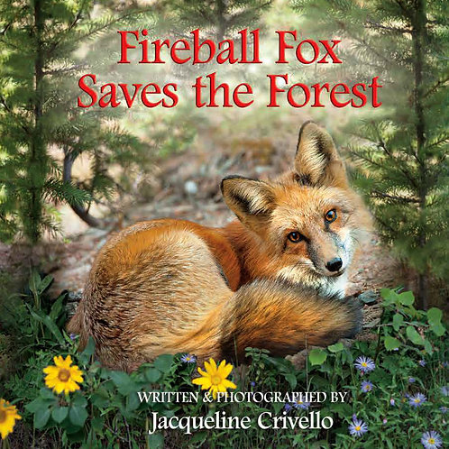 Fireball Fox Saves the Forest