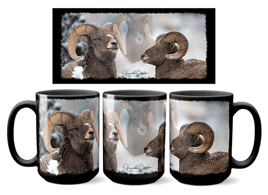 Big Horn Sheep W-012B