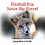 Thumbnail: Fireball Fox Saves the Forest