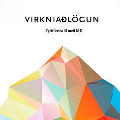Virkniaðlögun forsíða_edited.jpg