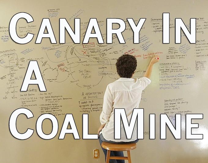 canary-in-a-coal-mine-still.3.jpg