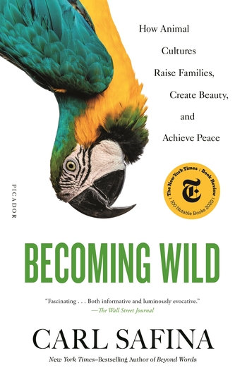 BECOMING WILD: HOW ANIMAL CULTURES RAISE FAMILIES, CREATE BEAUTY.....