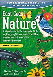 EAST COAST NATURE: A VISUAL GUIDE TO THE MAMMALS, BIRDS, REPTILES, AMPHIBIANS