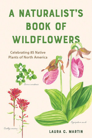 A Naturalist's Book of Wildflowers Celebrating 85 Native Plants in North America