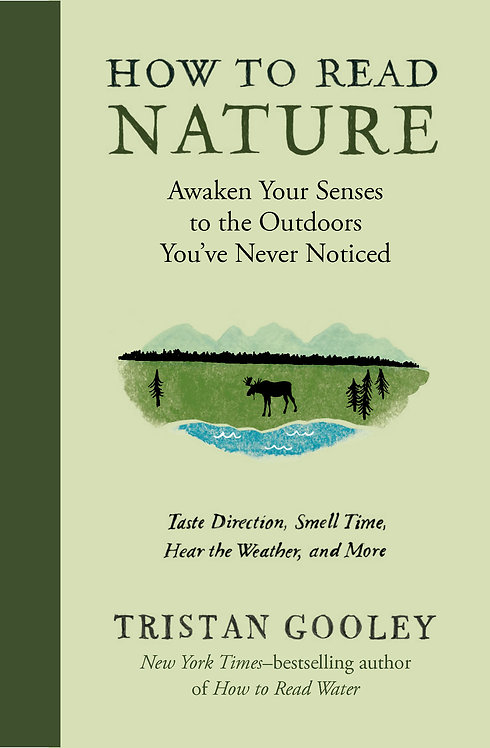 How to Read Nature Awaken Your Senses to the Outdoors You've Never Noticed