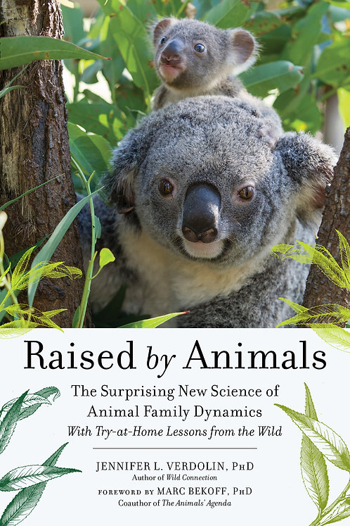 Raised by Animals The Surprising New Science of Animal Family Dynamics