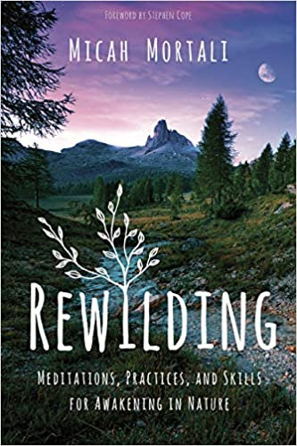 REWILDING: MEDITATIONS, PRACTICES, AND SKILLS FOR AWAKENING IN NATURE