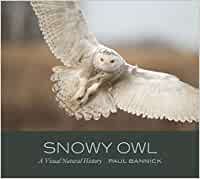 SNOWY OWL: A VISUAL NATURAL HISTORY by Paul Bannick