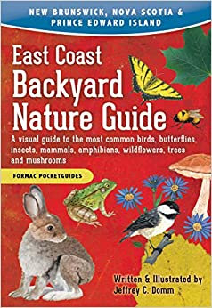 EAST COAST BACKYARD NATURE GUIDE: A VISUAL GUIDE TO THE MOST COMMON BIRDS