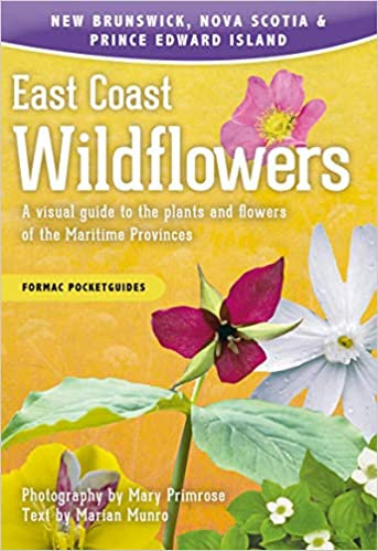 EAST COAST WILDFLOWERS: A VISUAL GUIDE TO THE PLANTS AND FLOWERS OF THE MARITIME
