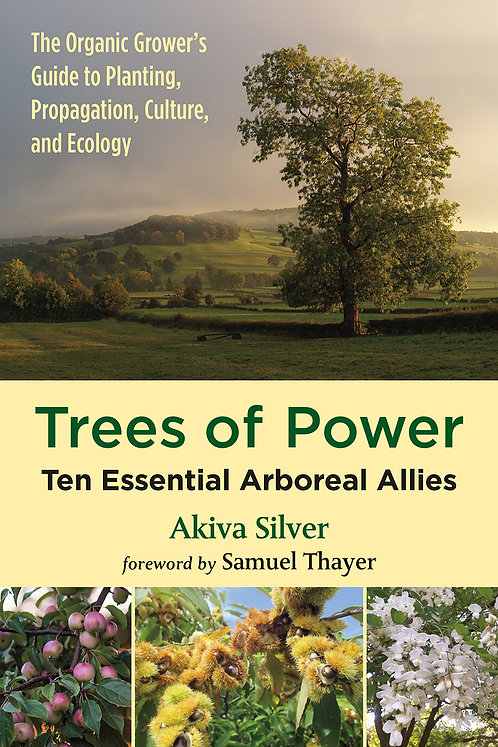 Trees of Power Ten Essential Arboreal Allies  by Akiva Silver