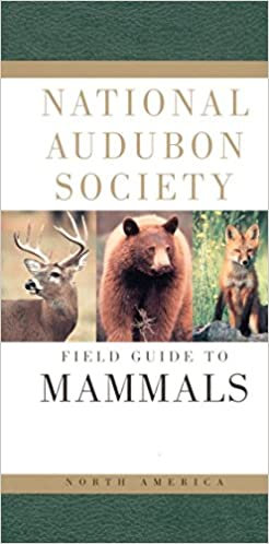 NATIONAL AUDUBON SOCIETY FIELD GUIDE TO NORTH AMERICAN MAMMALS-REVISED