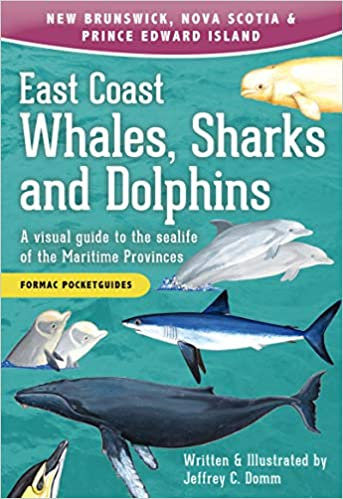 EAST COAST WHALES, SHARKS AND DOLPHINS: A VISUAL GUIDE TO THE SEALIFE