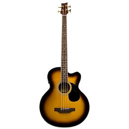 Beaver Creek Acoustic/Electric Bass