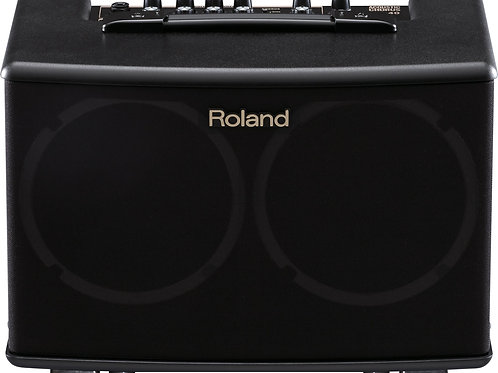 Roland Acoustic Chorus Guitar Amplifier