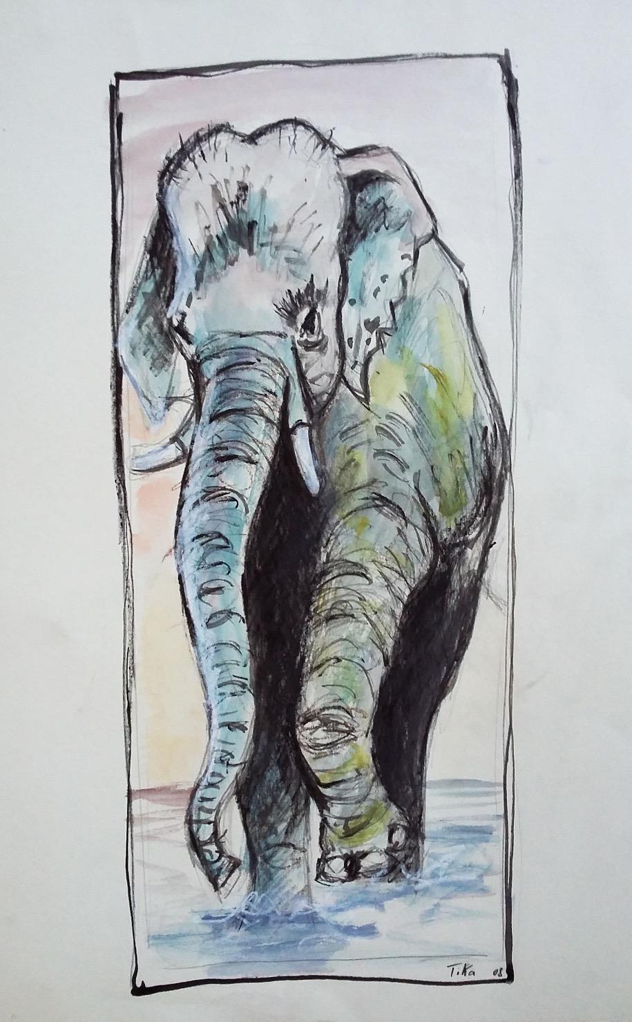 Elephant color_edited