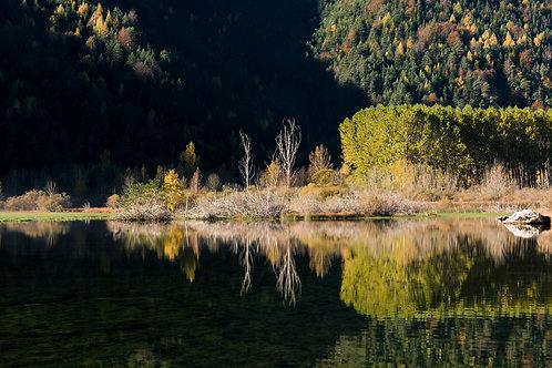 Reservorio de Pineta - España